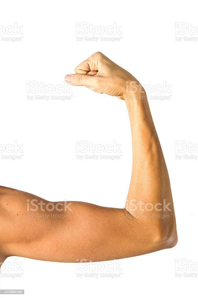 Human arm anatomy stock photo