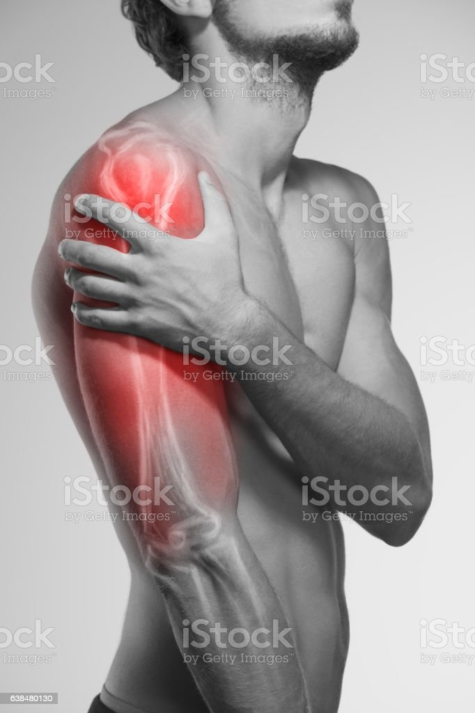 Human Arm Pain Anatomy Of The Human Arm Stock Photo More Pictures