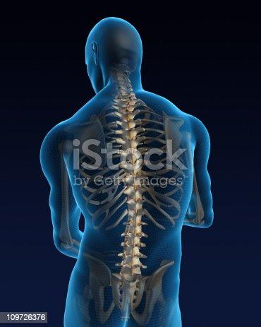 istock Human back 109726376
