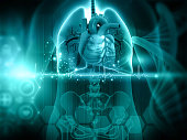 istock Human body anatomy respiratory system 1276756378