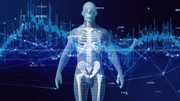 Human body and communication network concept. stock photo