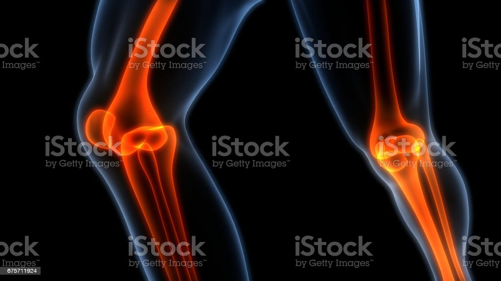 Human Body Bone Joint Pains (Knee Joints) stock photo