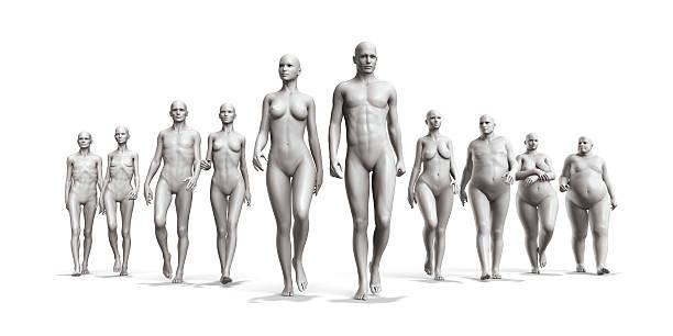 menschliche körper in seiner ganzen vielfalt - dünn stock-fotos und bilder