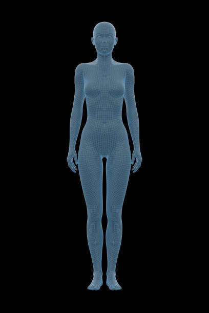 Human Body, Female, Woman stock photo