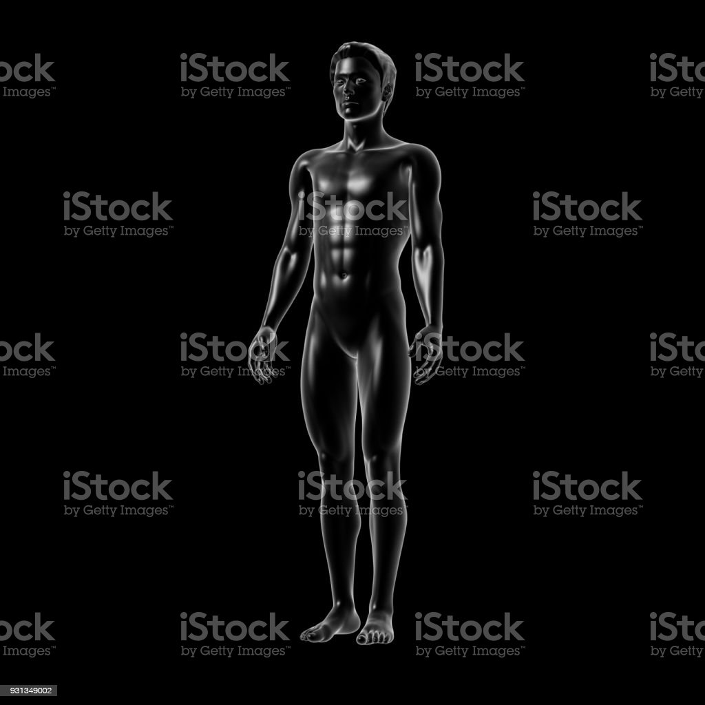 Human Body, Man stock photo