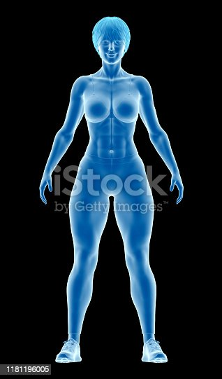 496193203istockphoto Human body of a fitness woman, standing, showing an athletic body, highlighting your muscles, on black background 1181196005