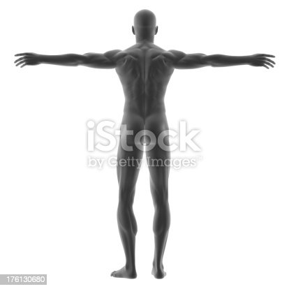 istock Human body of a man for study 176130680