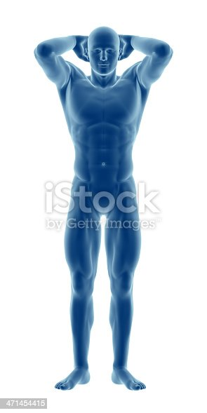 135895161 istock photo Human body of a man highlighting your muscles 471454415