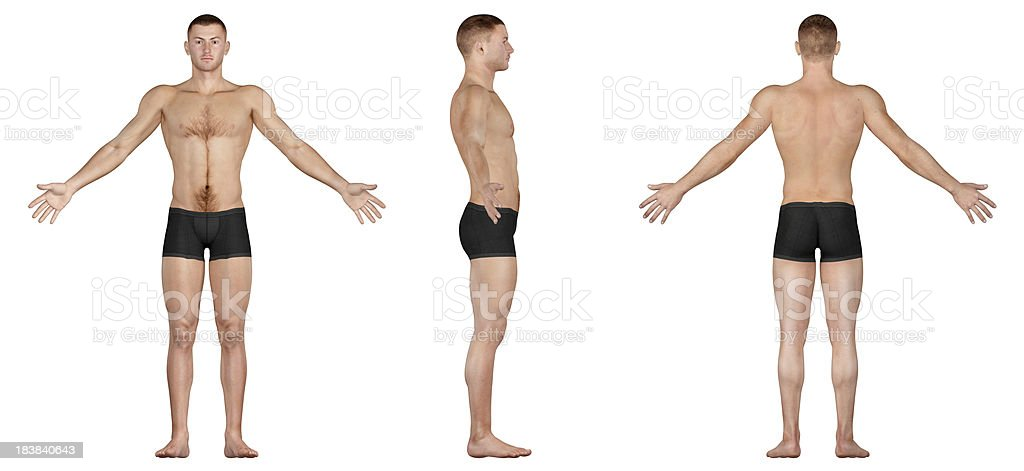 Human body of a slim man, for study stock photo