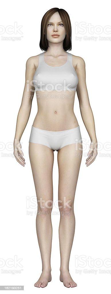Menschlichen Körper Einer Frau Stock-Fotografie und mehr Bilder von ...