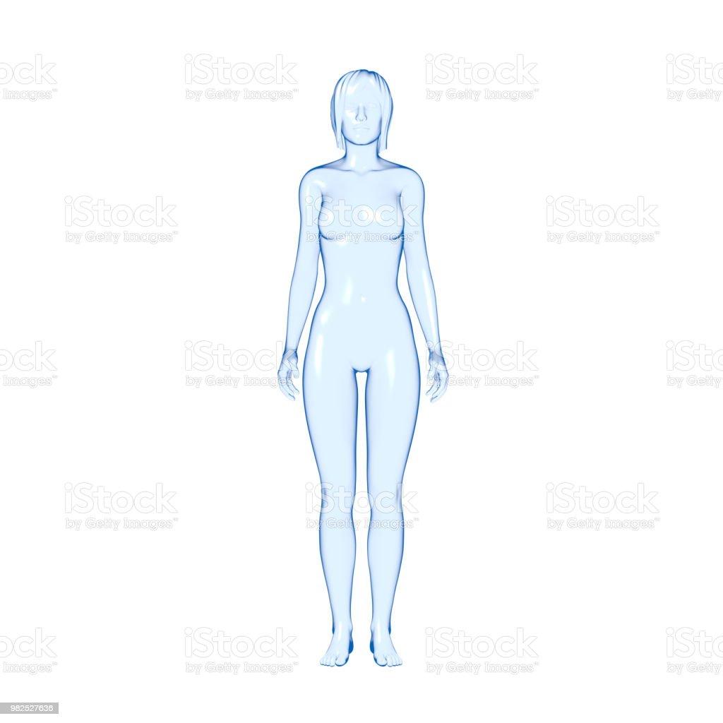 Human Body, Woman stock photo