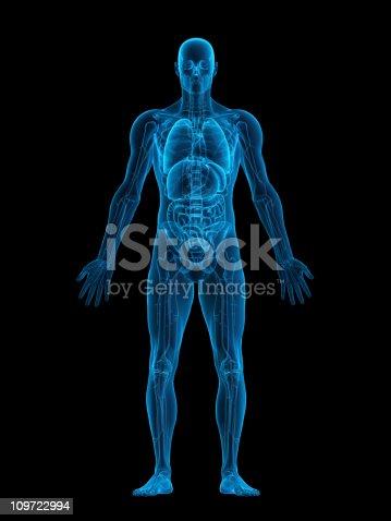 istock Human body X-ray 109722994