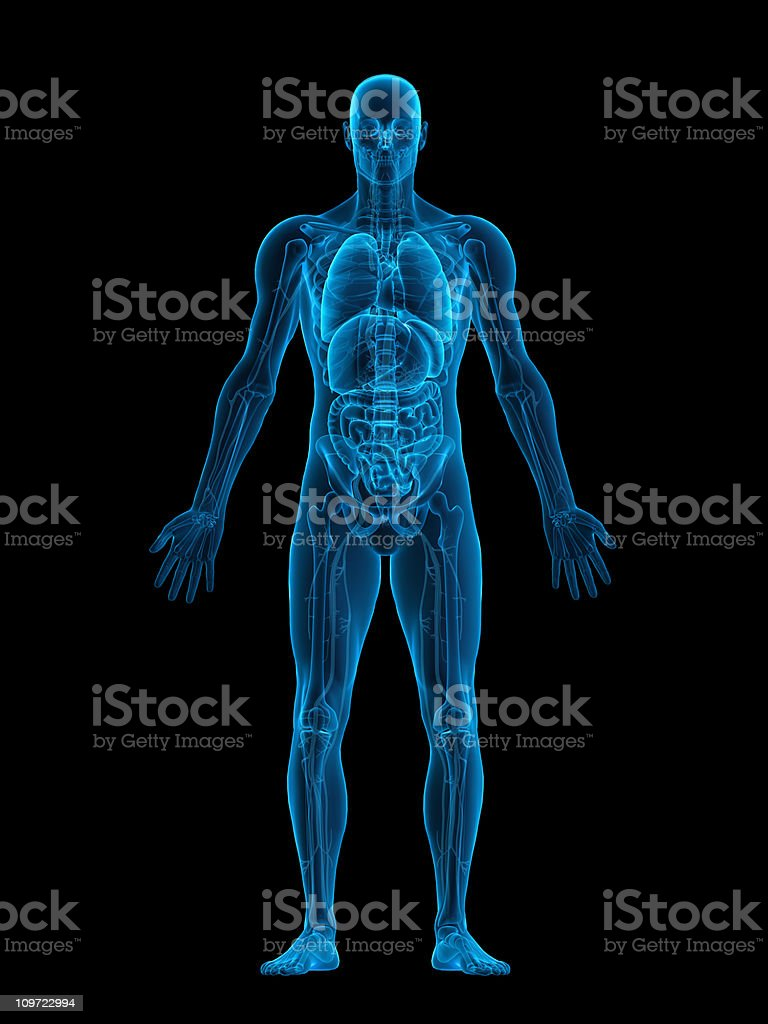 Human body X-ray stock photo