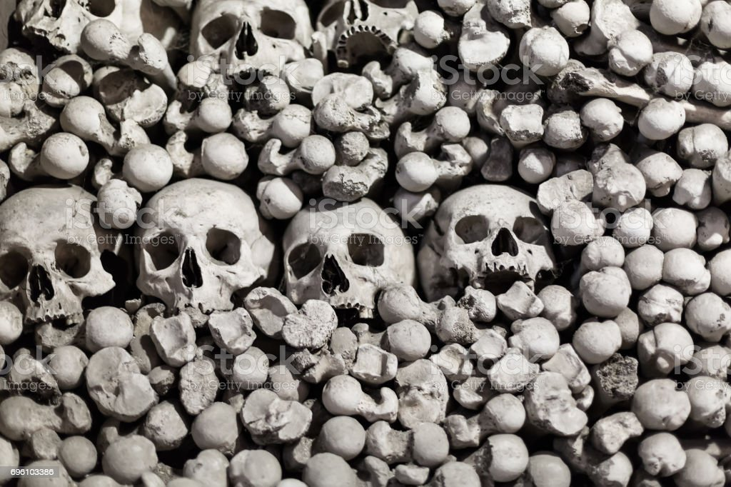Human bones and skulls as a background stock photo