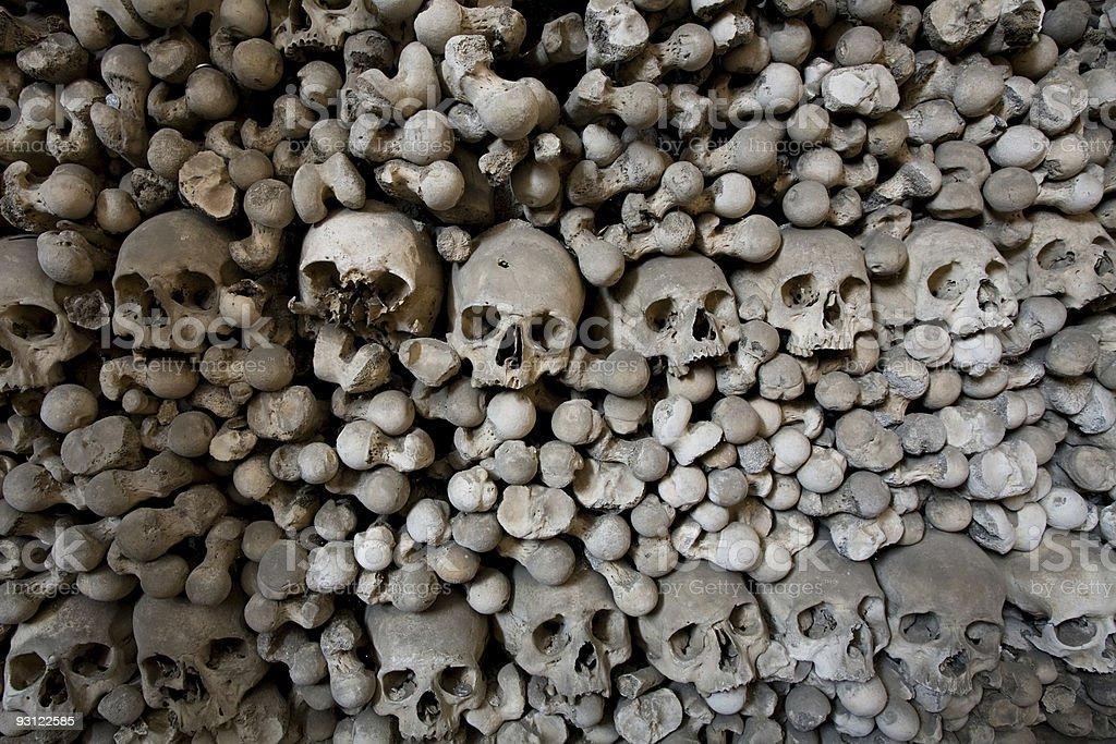 human bones and skulls royalty-free stock photo