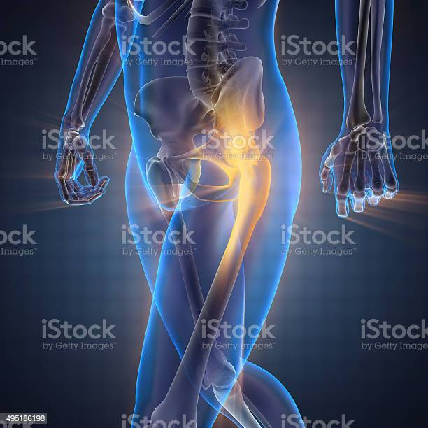 Human Bones Radiography Scan Image Stock Photo - Download Image Now