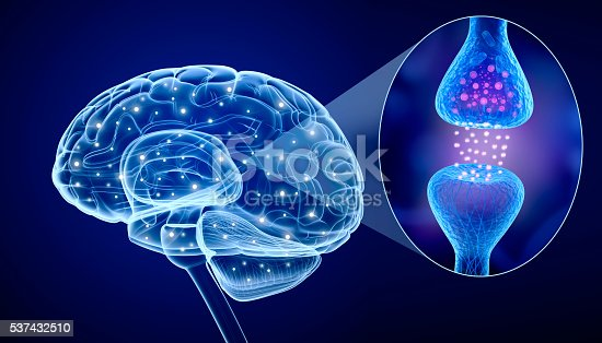 istock Human brain and Active receptor 537432510