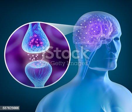 istock Human brain and Active receptor 537625666