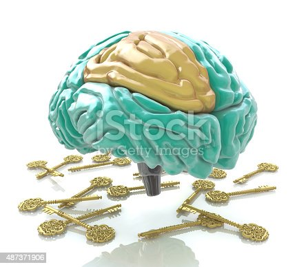 istock Human brain and keys 487371906
