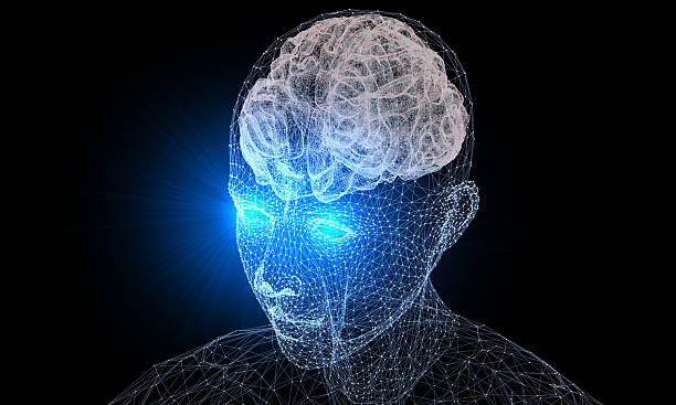 Human Brain and Vision stock photo