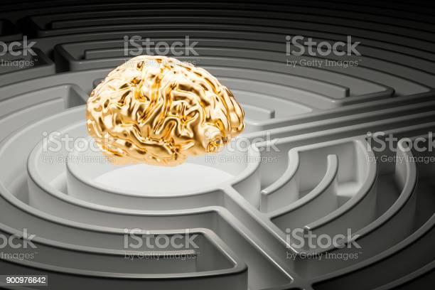 Human brain at the center of a maze 3d rendering picture id900976642?b=1&k=6&m=900976642&s=612x612&h=zjvprddbt8hxzypelrppqqaa7olrgbh7pdab7uig9ck=
