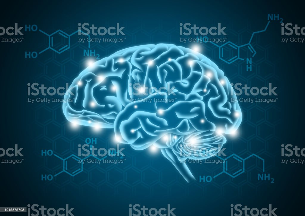 Human brain illustration with hormone biochemical concept background stock photo