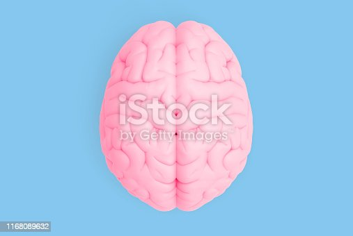 istock Human brain in top view isolated on blue pastel BG 1168089632