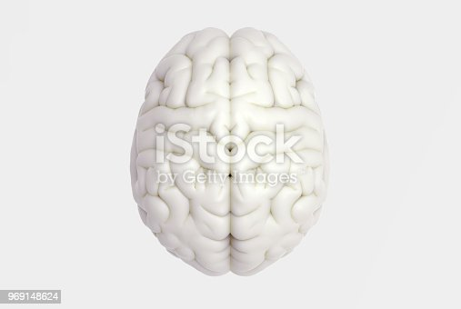 istock Human brain in top view isolated on white BG 969148624