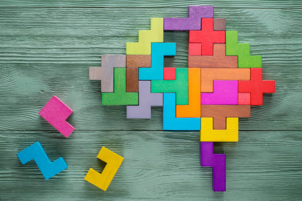 Human brain is made of multi-colored wooden blocks. stock photo