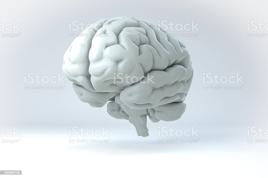 3D Human Brain Isolated Illustration. Science Anatomy Background. stock photo
