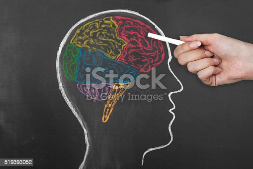 Human Brain Lobes on Blackboard. Frontal lobe, occipital lobe, parietal lobe, and temporal lobe. Human hand pointing with chalk lobe of human brain.