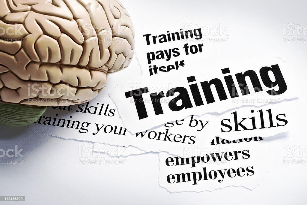 Human brain model on headlines concerning the value of training royalty-free stock photo