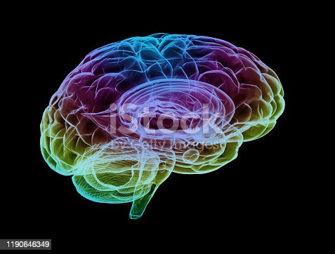 Human brain multi color isolated on black background