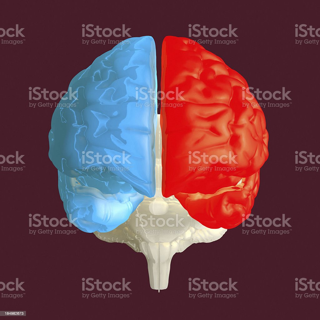 Human brain on dark background stock photo