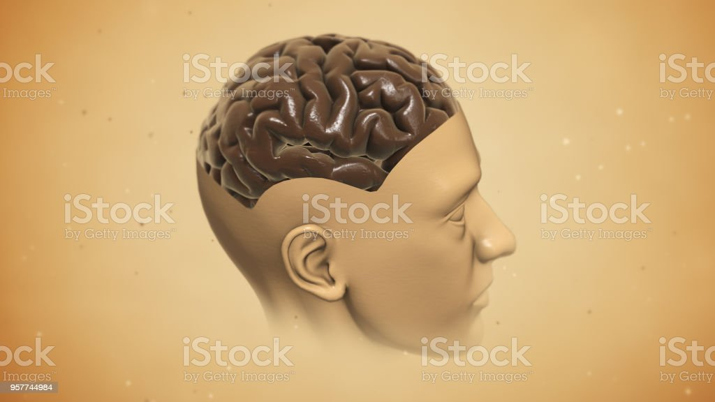 CG Human Brain Render stock photo