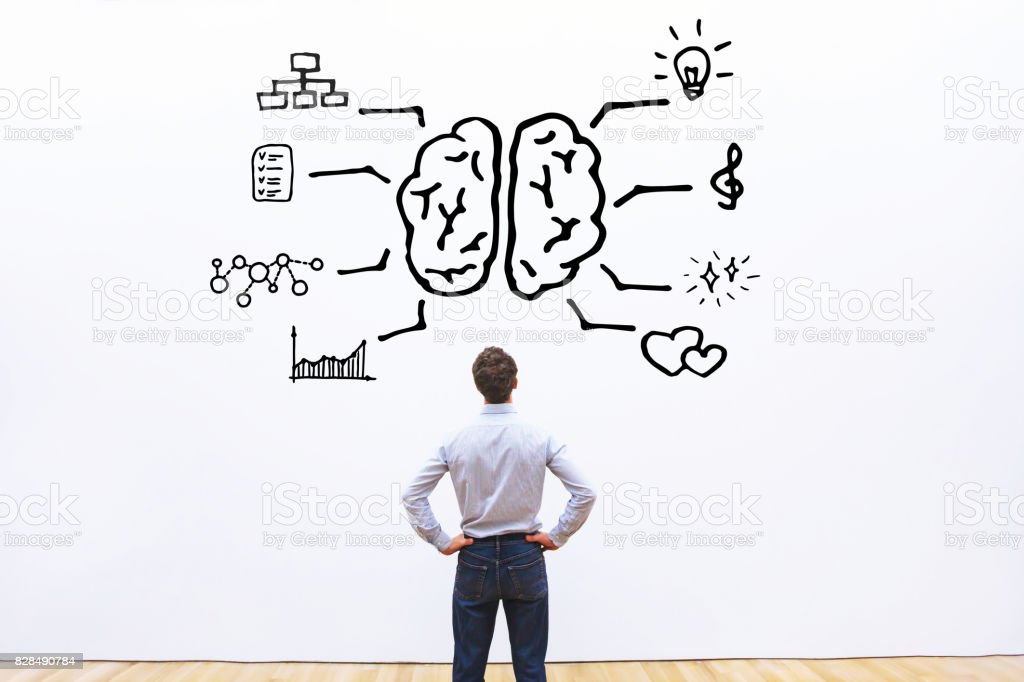 human brain right left stock photo