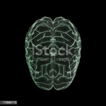 183306794 istock photo Human brain wireframe 172660170