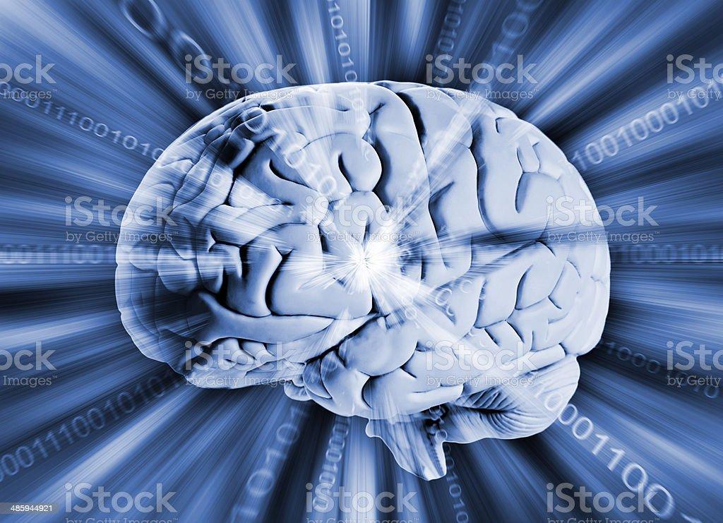 Human brain with binary code royalty-free stock photo