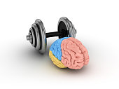 Human Brain with Dumbbell - 3D Rendering