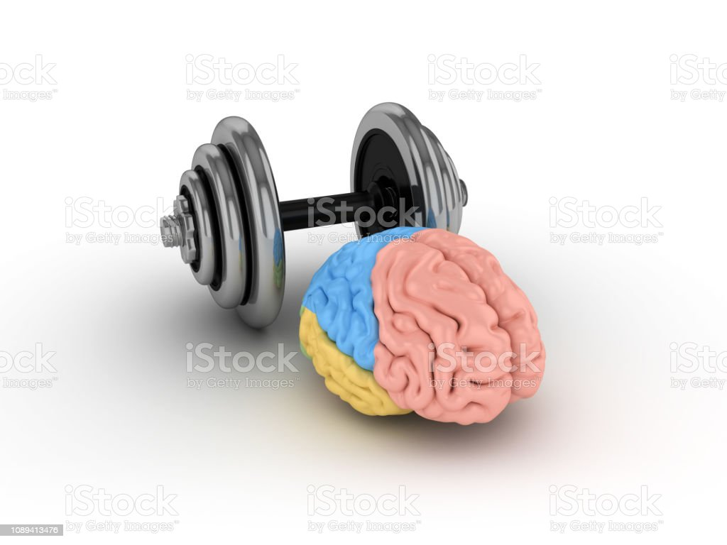 Human Brain with Dumbbell - 3D Rendering stock photo