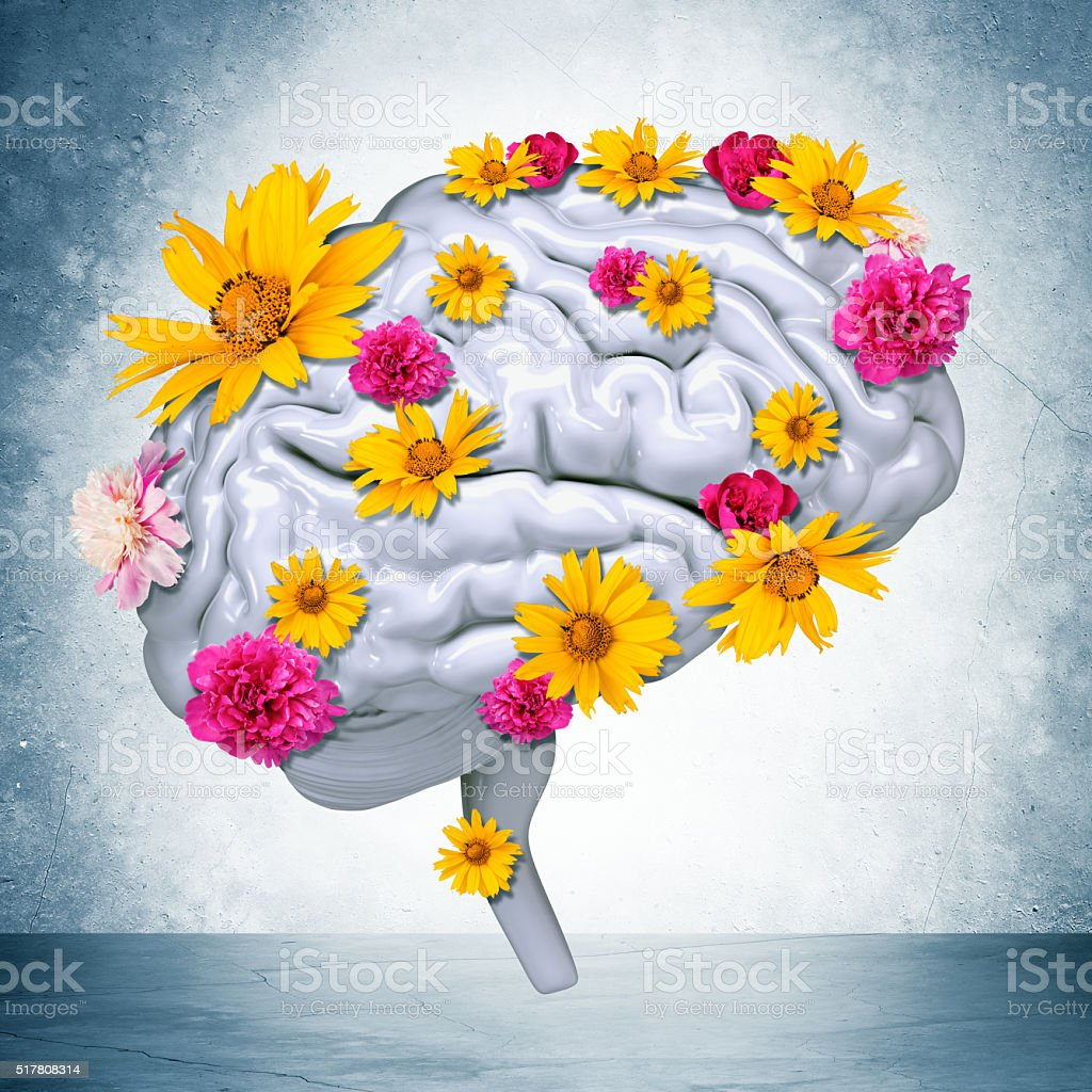 Human brain with flowers stock photo