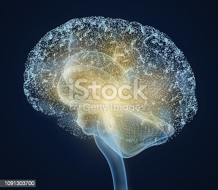 Human brain X-ray scan , Medically accurate 3D illustration