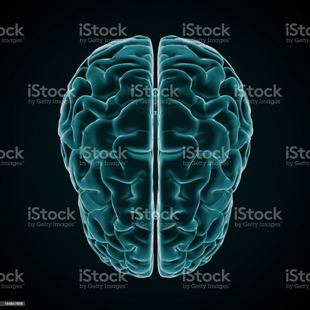 Human Brain X-ray style stock photo