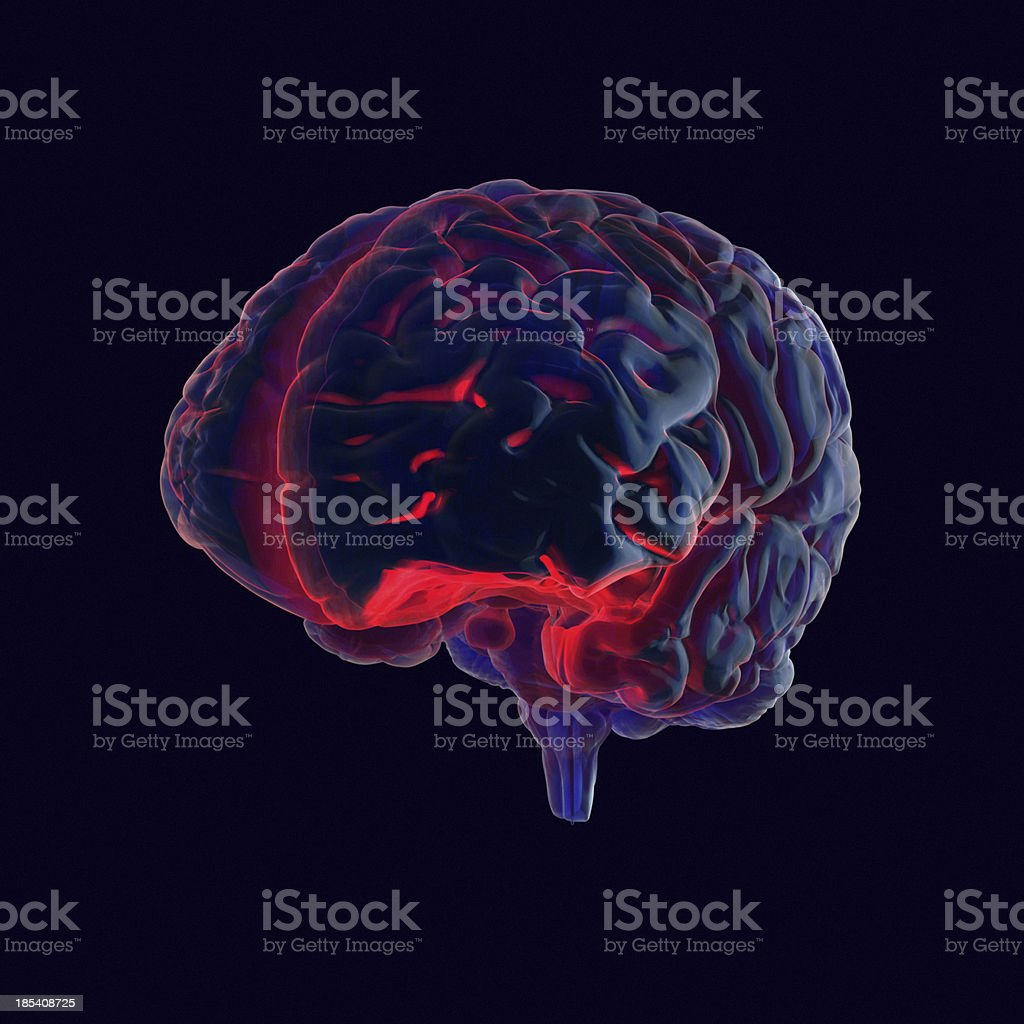 Human Brain X-ray style stock photo