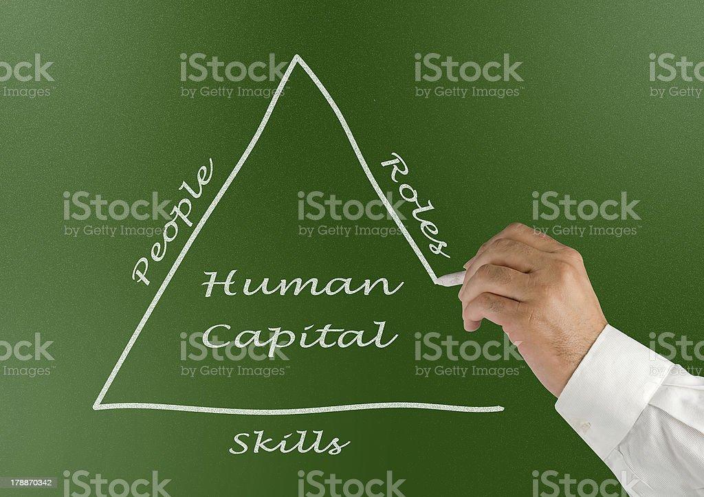 Human Capital royalty-free stock photo