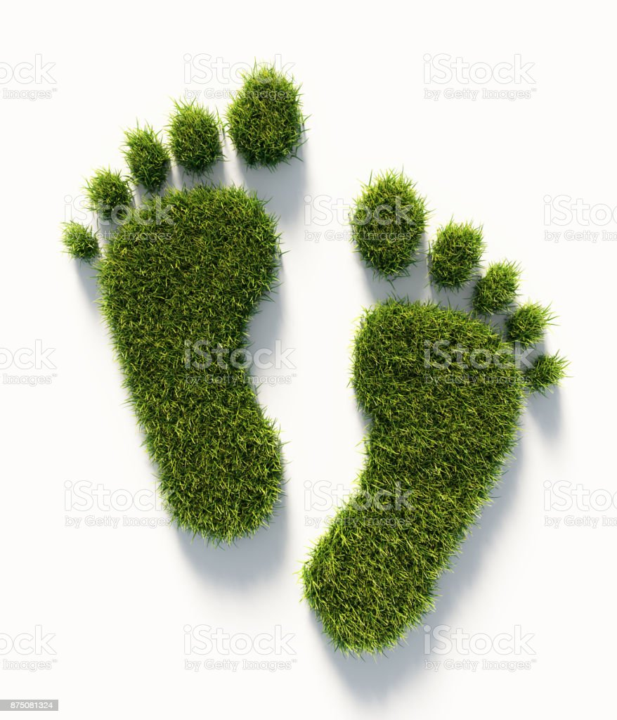 Human Carbon Footprint Symbol Made Of Green Grass : Green Energy Concept stock photo