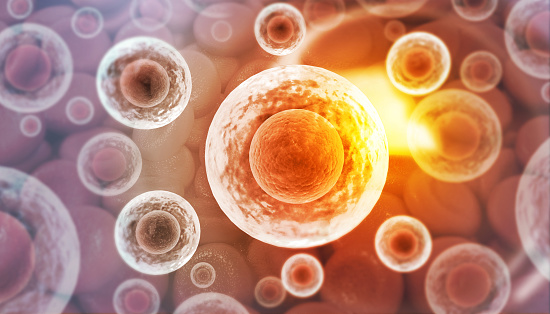 Human Cells Stock Photo - Download Image Now
