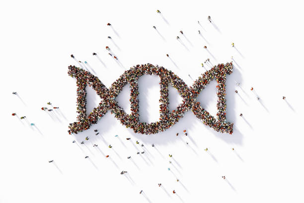 Human Crowd Forming A Big DNA Symbol - foto stock