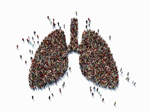 Human Crowd Forming A Big Lung Symbol Human crowd forming a big lung symbol on white background. Horizontal  composition with copy space. Clipping path is included. Health concept. lung stock pictures, royalty-free photos & images