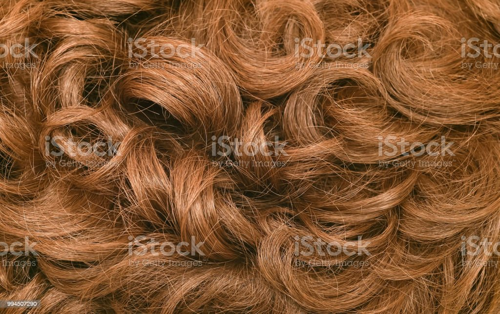 Close-up of a human curly hair